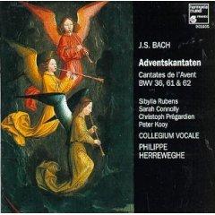 Bach: Advent Cantatas (BWV 36, 61, 62) /Herreweghe